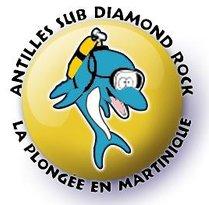 Antilles Sub Diamond Rock