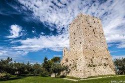 L'Acropoli di Civitavecchia