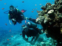 Red Sea Relax Dive Centre