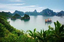 Halong Bay Cruises - Private Tours