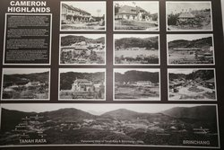 Cameron Highlands discover the history