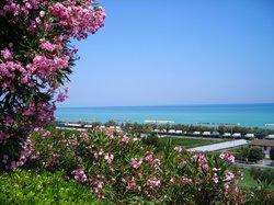 Parco sul Mare