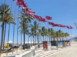 Gonzaga Beach