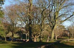 Ellington Park