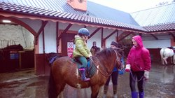 Wellsfield Equestrian-Horseback Riding
