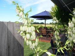 Te Awanga Estate Vineyard