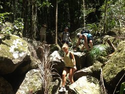 Byron Bay Adventure - Day Tours