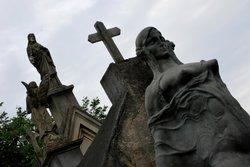 Cemiterio Do Araca