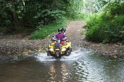 Dammon's ATV Tours