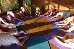 Horizon Yoga Center & Tea House
