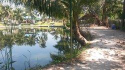 Bottom Pond