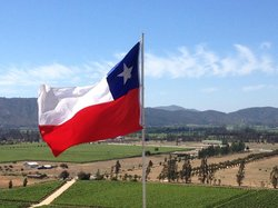 Chile Wine Trails -Tours