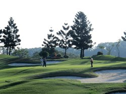 Amarilla Golf and Country Club