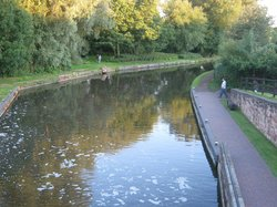 The Bratch Canalside
