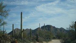 Desert Road Leaving Hacienda