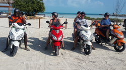 Island Tours & Excursions