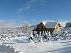 Cllinch Valley Cabin