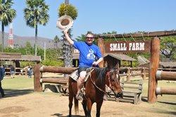 Horse riding free