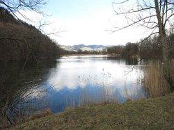 Naturschutzgebiet Wichenstein