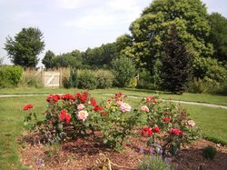 View out over the rose border at La Cloue B&B