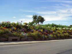 St Fraimbault Flowery Village