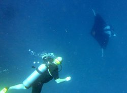 Scandinavian Divers Khao Lak