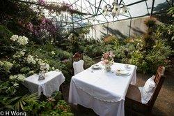 Sonya's Garden Spa