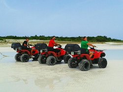 We Tree Group - ATV Tours