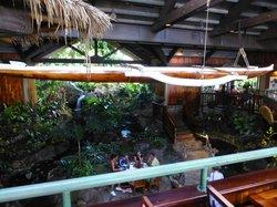 barefoot bar area