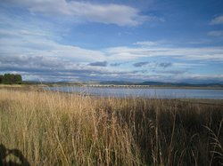 Ahuriri Estuary Walk