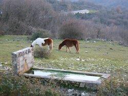 Parco Naturale Regionale dei Monti Lucretili