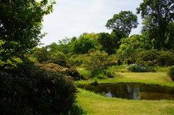 Akagi Nature Park