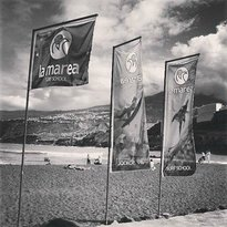 La Marea Surf School