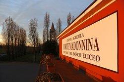 Produzione vini D.O.C. del Bosco Eliceo