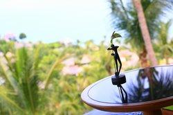 beautiful view of Koh restaurant