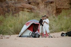 Wadi Rum Nature Tours
