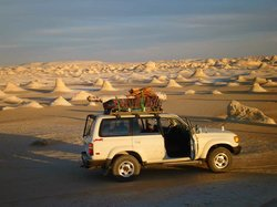 Desert Safari Egypte - Day Tours
