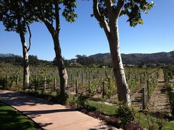 EOS Santa Barbara Wine Tours