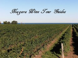Niagara Wine Tour Guides
