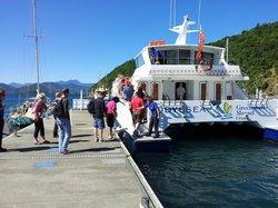 Seafood Odyssea Cruise