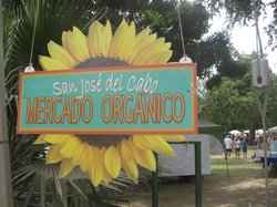 San Jose Mercado Organico
