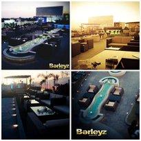 BarleyZ