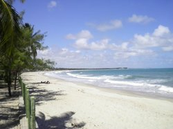 Praia De Maracaipe