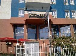 Palm Tree Nightclub