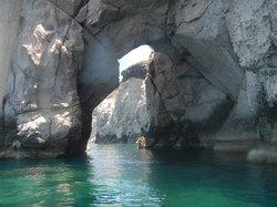 Baja Bay Tours