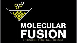 Molecular Fusion