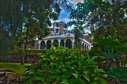 Lavington Hill House