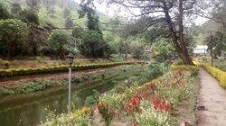 Blossom Hydel Park