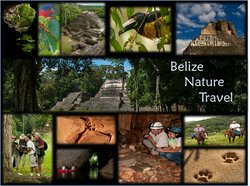 ‪Belize Nature Travel‬