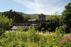 Замок Гленвех